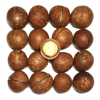 Орех макадамия неочищенный крупный