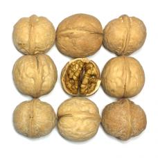 Грецкий орех неочищенный